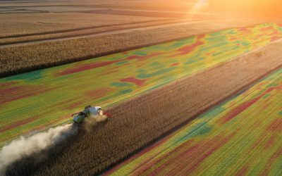Meet the FarmTRX Maps – 9 Ways to View Your Yield Data